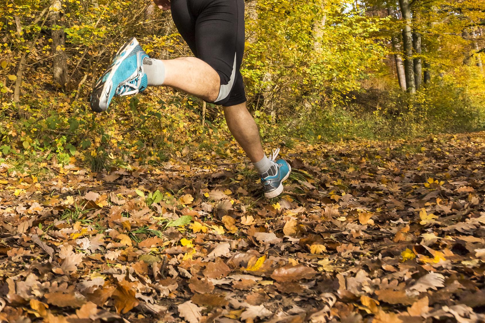 lechuga interior enfermo  Fisioterapia y Trailrunning - Alcorcón
