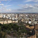 Crea tu empresa de Fisioterapia a domicilio en Almería