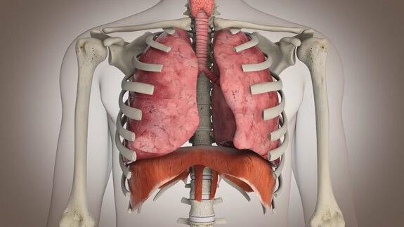 Ejercicios para fortalecer el sistema respiratorio